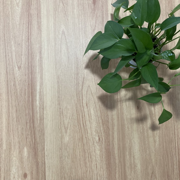 Luxury Vinyl Plank Flooring looselay